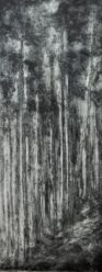 collagraph and carborundum, 37 x 100 cms
