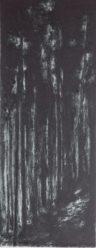 collagraph and carborundum, 37 x 100